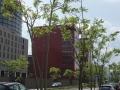 Ailanthus-altissima_Belval_2014-07-23_09