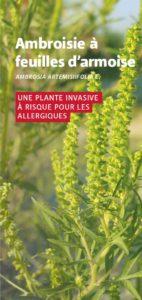 flyer-cover-fr